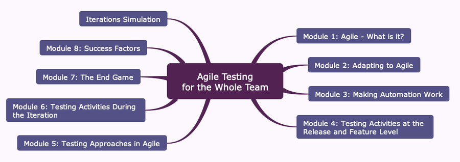 """What You Always Wanted to Know About """"Agile Testing for the Whole Team"""": Interview With the Trainer"""